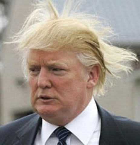 donald trump hair piece. donald trump hair piece.