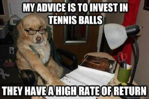 invest-in-tennis-balls-dog-meme